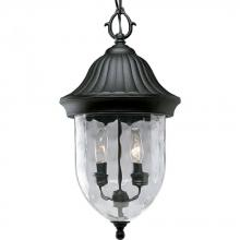 Progress P5529-31 - 2-Lt. hanging lantern