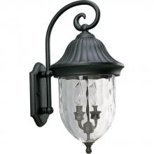 Progress P5829-31 - 2-Lt. wall lantern