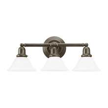 Sea Gull 44062-782 - Three Light Wall / Bath